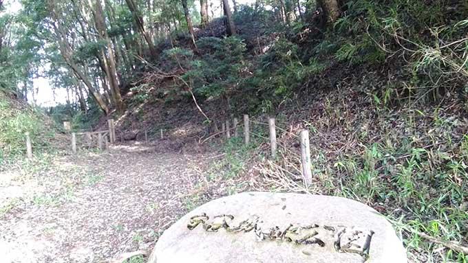 関東子供が自然と遊べる場所